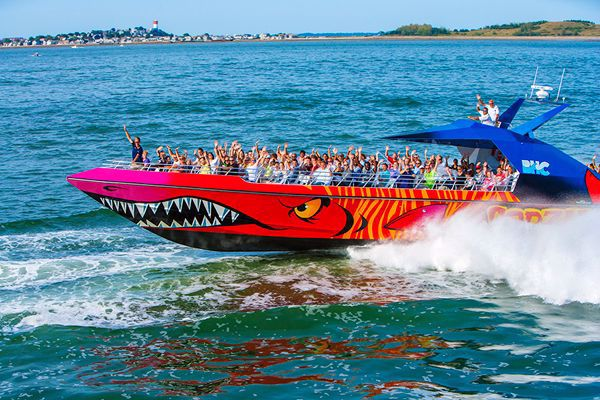 Codzilla Thrillboat Ride