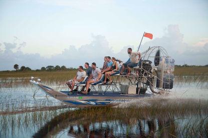 Tour the Florida Everglades