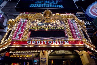 Odditorium strange even by NY standards